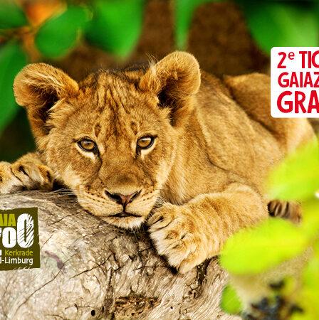 Jan Linders GAIA ZOO actie 2020 2e kaartje gratis